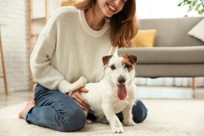 女性の足元にいる犬