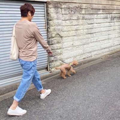 青木さんとおっぽちゃん散歩