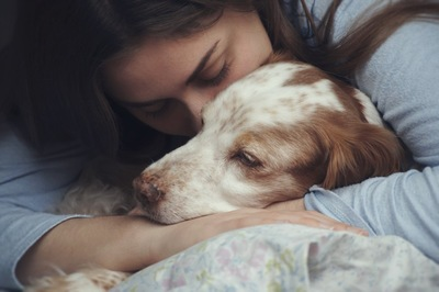 女性に抱きしめられている犬
