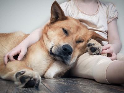 女性にもたれかかって寝る犬
