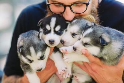 子犬たちを抱える男性