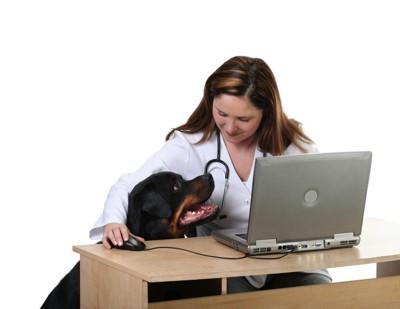 犬とドクター