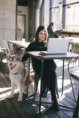 座るハスキー犬とパソコンをしている女性