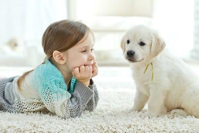 白いラグの上の少女と子犬