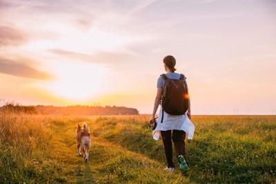 自然の中を歩く女性と犬