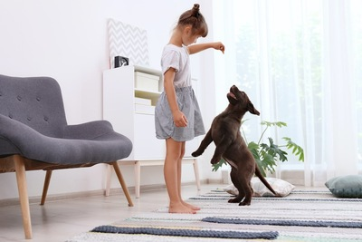 子供の持つおやつを目掛けてジャンプしようとする犬
