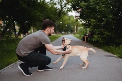 暴れる犬を抑えようとする飼い主の男性