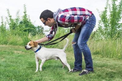 散歩中に飼い主に褒められている犬