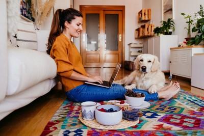 パソコンをする人と犬