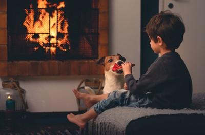 暖炉の前にいる犬と子ども