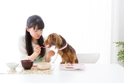 テーブルで人と食事をする犬