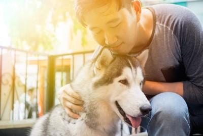 ハスキー犬を撫でている男性