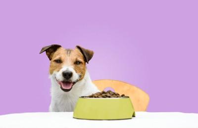 笑顔の犬とドッグフード