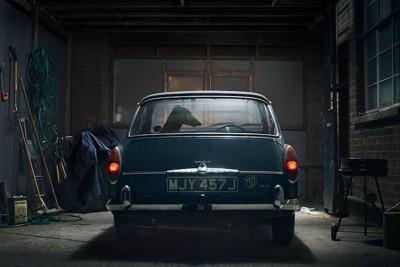 青い車の後ろ姿と車の中にいる犬