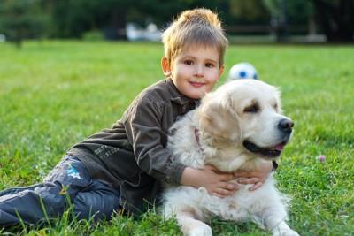 芝生の上の男の子とゴールデンレトリーバー