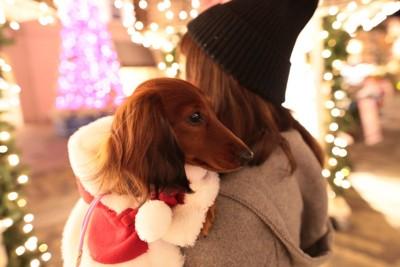 イルミネーションと女性に抱っこされている犬