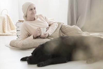 犬と認知症