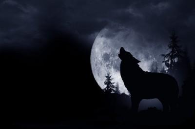 オオカミと満月