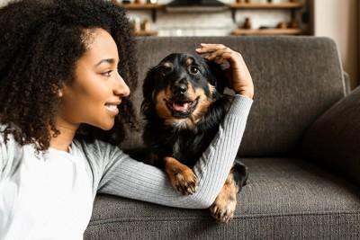 ソファーに乗っている犬を撫でる女性