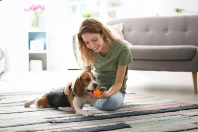 部屋でボール遊びをする女性と犬