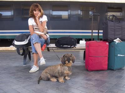 駅のホームのベンチに座る犬を連れた女性