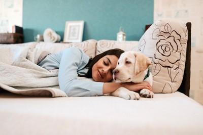 ベッドで横になる飼い主に寄り添う犬