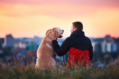 座っている男性と犬の後ろ姿