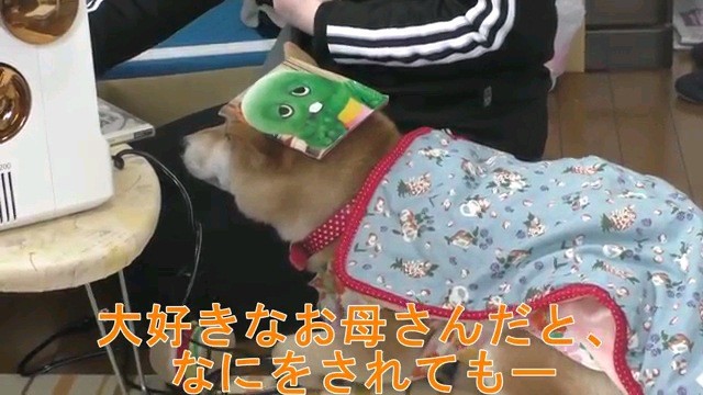 大好きな〜字幕