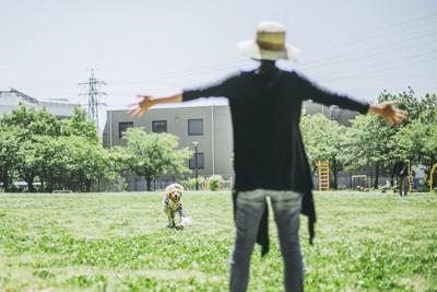 両手を広げる女性と走ってくる犬