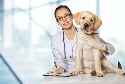 医師と座っている犬