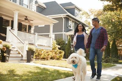 住宅地の前を散歩するカップルと犬