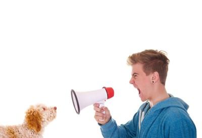 メガホンで犬を叱る男性