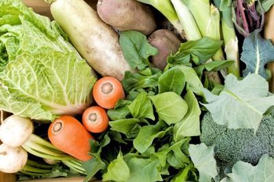 様々な生野菜
