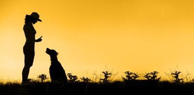 飼い主さんと犬のシルエット