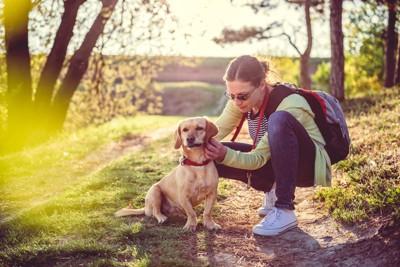 犬の様子を確認する女性