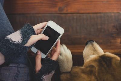 スマホを操作する人の手と寄り添う犬