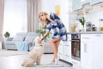 キッチンに立つ女性と座る犬