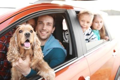 家族と一緒に車で出かける犬