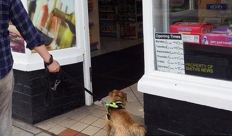 犬と一緒に入れるお店