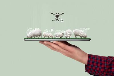ドローンと羊とタブレットのモデル画像