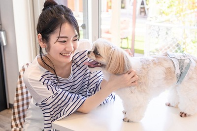 愛犬と戯れる女性