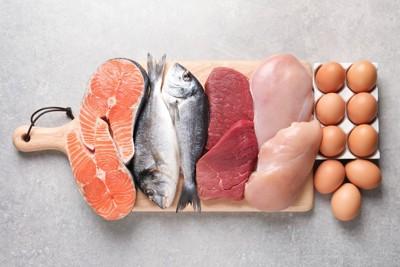 まな板の上のタンパク質食材