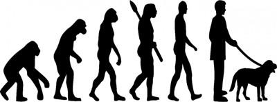 ヒトの進化と犬のイラスト