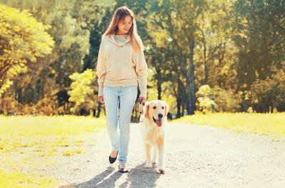 散歩中の飼い主と犬