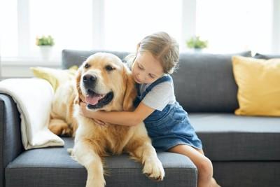 ソファーに座る犬に抱きつく女の子
