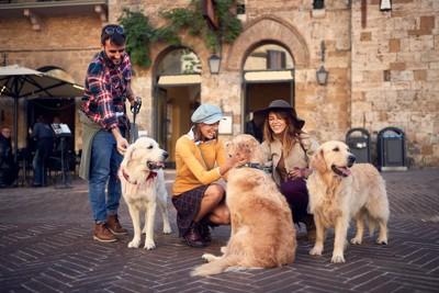 犬と女性たち