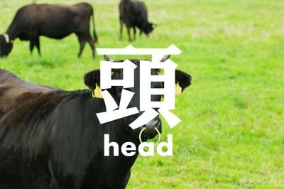 牛の頭と漢字