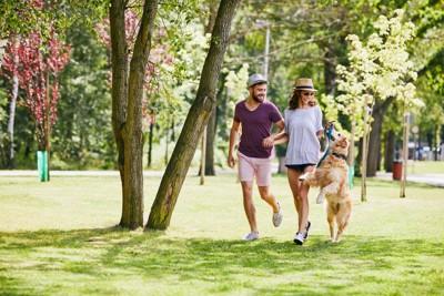 飼い主と散歩している犬の写真