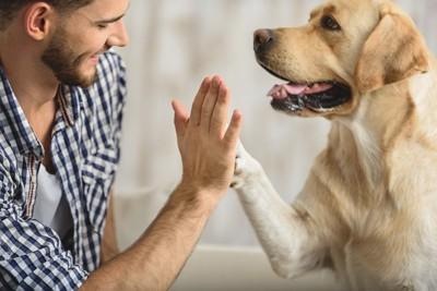 ハイタッチする犬と男性