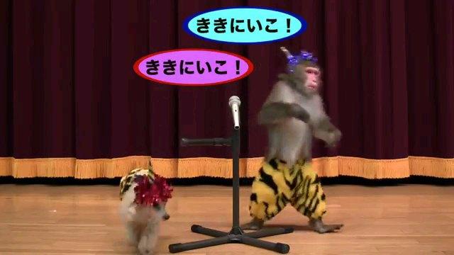 ききにいこ!~字幕